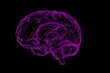como entrenar el cerebro